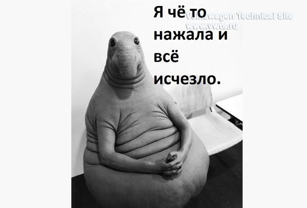 photo_699.jpg
