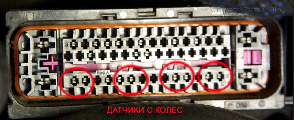 fdgca8s-960.jpg