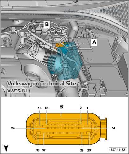 sk-oct3-fl-el-11162.jpg