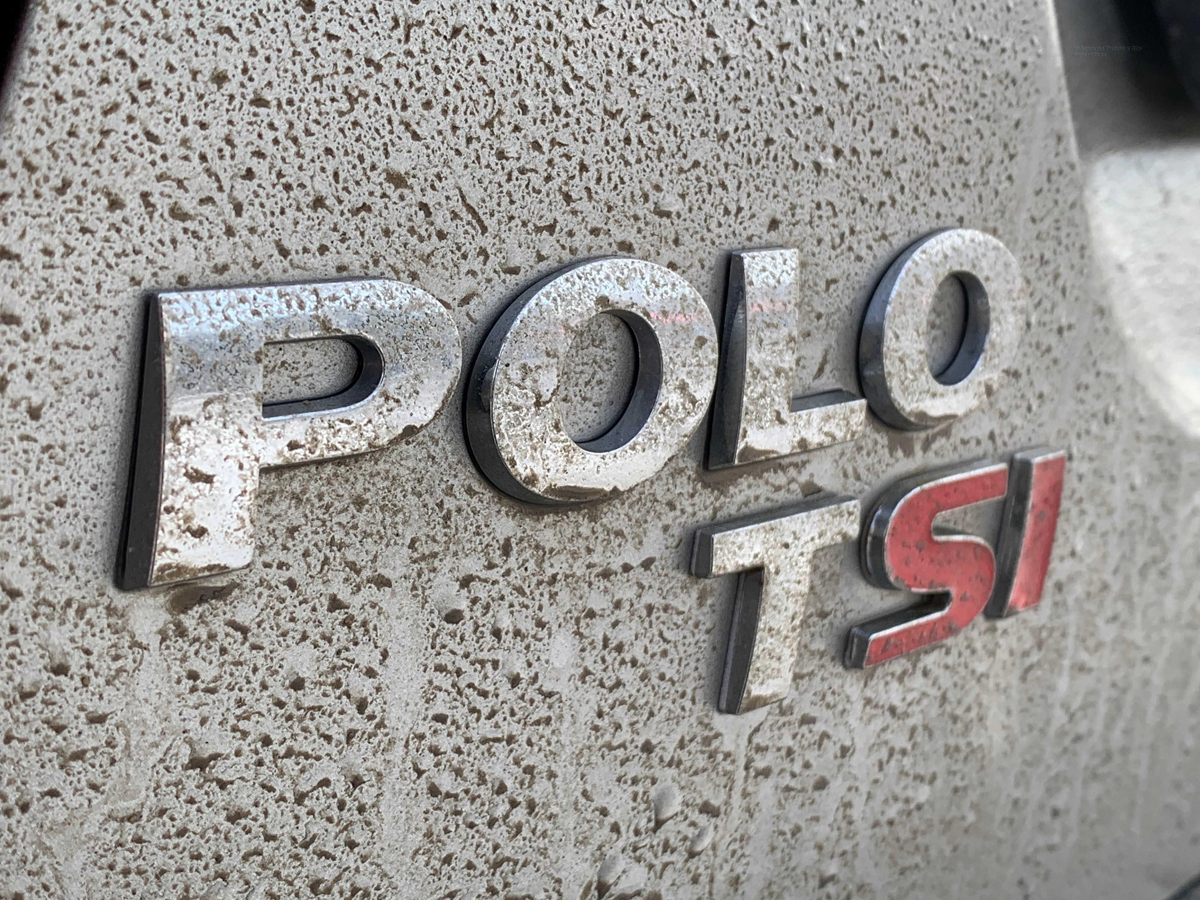 polo1.JPG